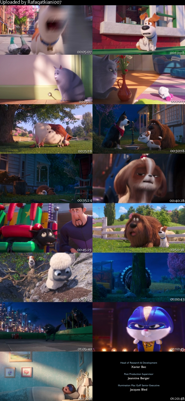 The-Secret-Life-of-Pets-2-2019-BRRip-Xvi-D-AC3-EVO-s.jpg