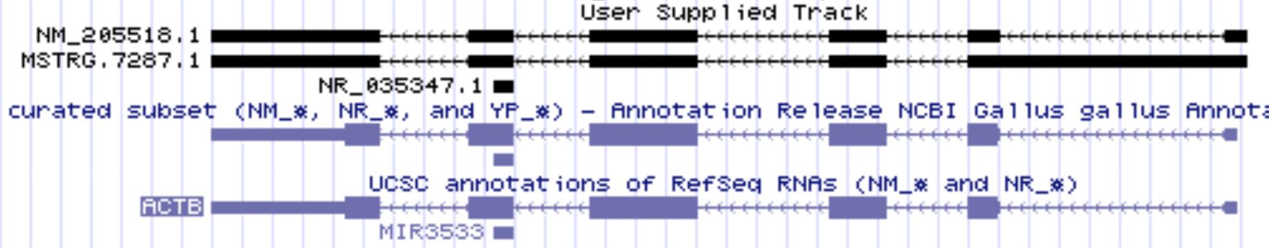 Custom track screen capture
