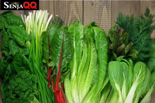 10 Sayuran yang Mengandung Asam Folat Ini Buat Tubuh Lebih Sehat