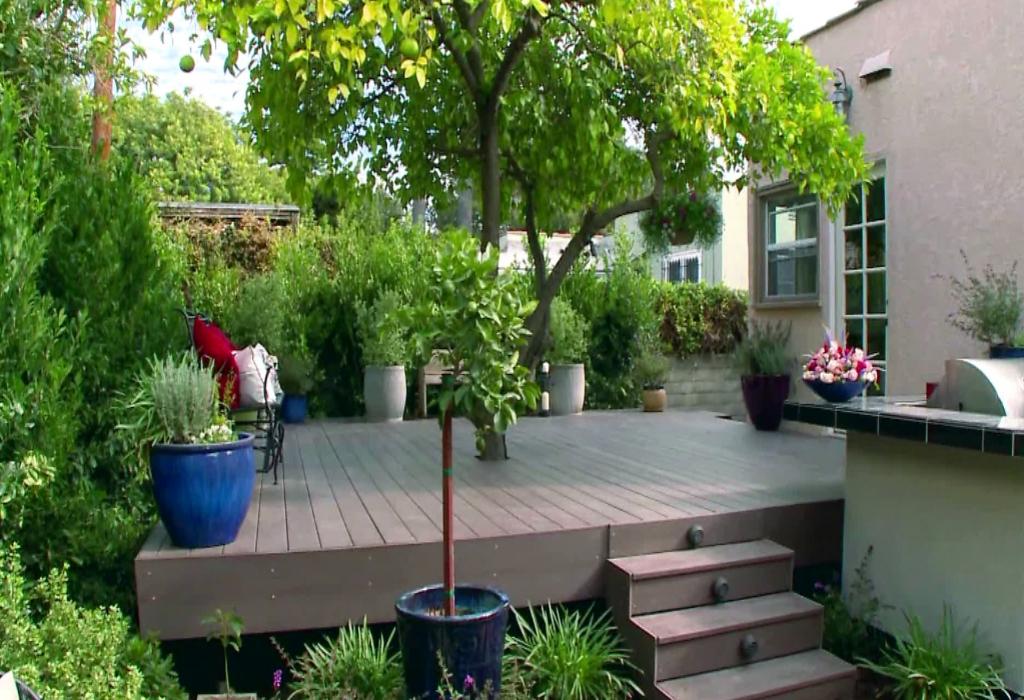 Renovation of Sobralia Orchid Home Garden Design
