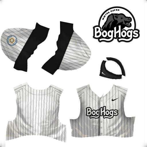 jerseys-Winter-Haven-Bog-Hogs.png