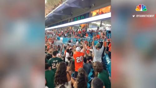 Watch-Miami-Fans-Using-American-Flag-To-Catch-Falling-Cat-at-Hard-Rock-Stadium-0-26-screenshot