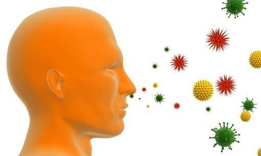 Как аллергены влияют на организм