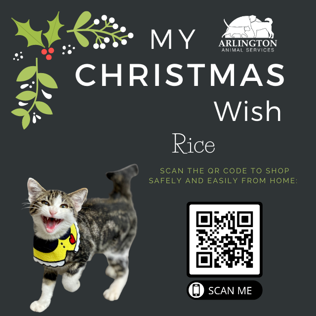 Animal-Services-2020-Angel-Tree-070.png