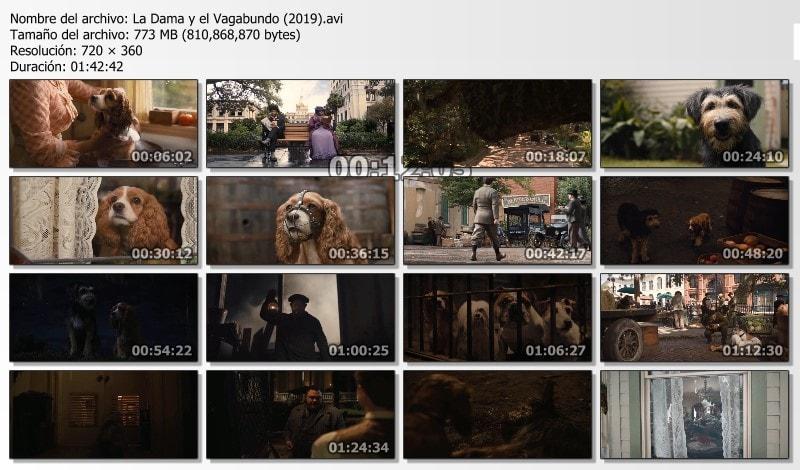 La Dama y el Vagabundo (2019) Capturas