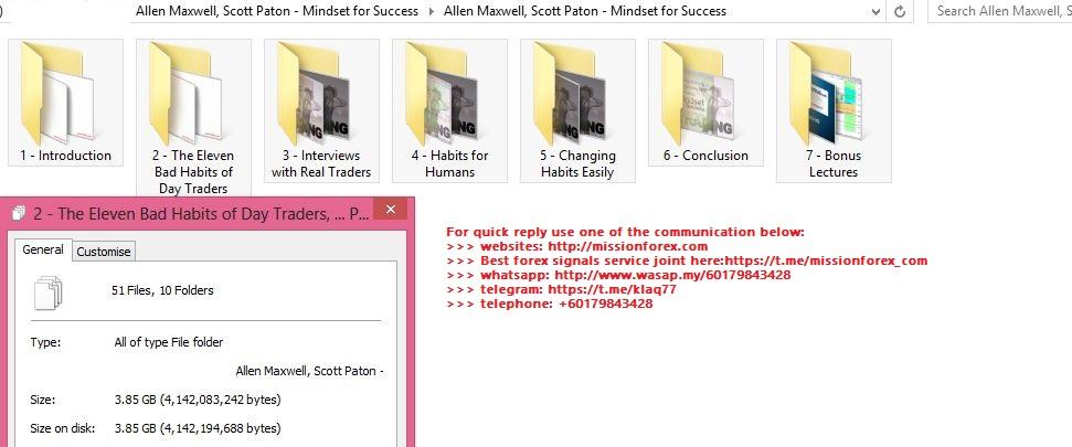 Allen Maxwell, Scott Paton - Mindset for Success