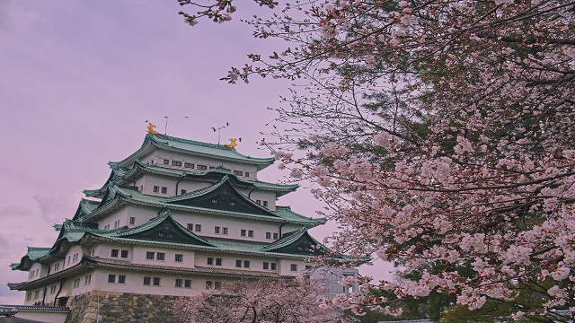 Top things to see and do in the Aichi Prefecture, Japan