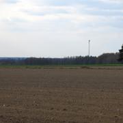 IMG-0533