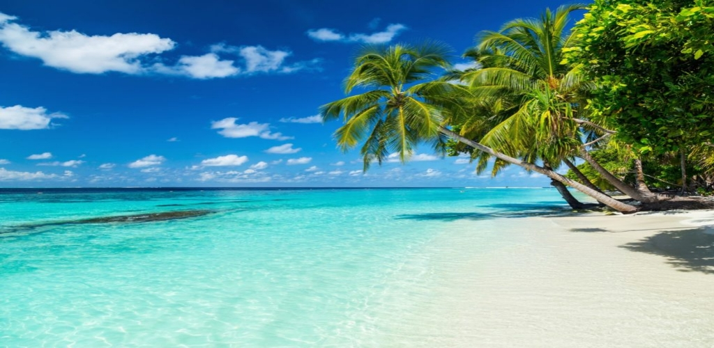 Best Tropical Vacations