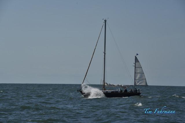 SARW-Shore-2021-04-23-015.jpg