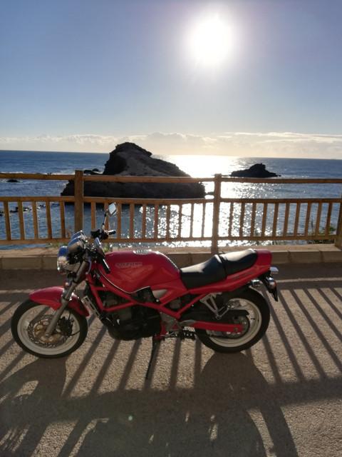 Bandit roja en Los Alcázares, la zona del Mar Menor - Página 2 IMG-20190111-100528