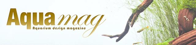 Banner-AQUAmag