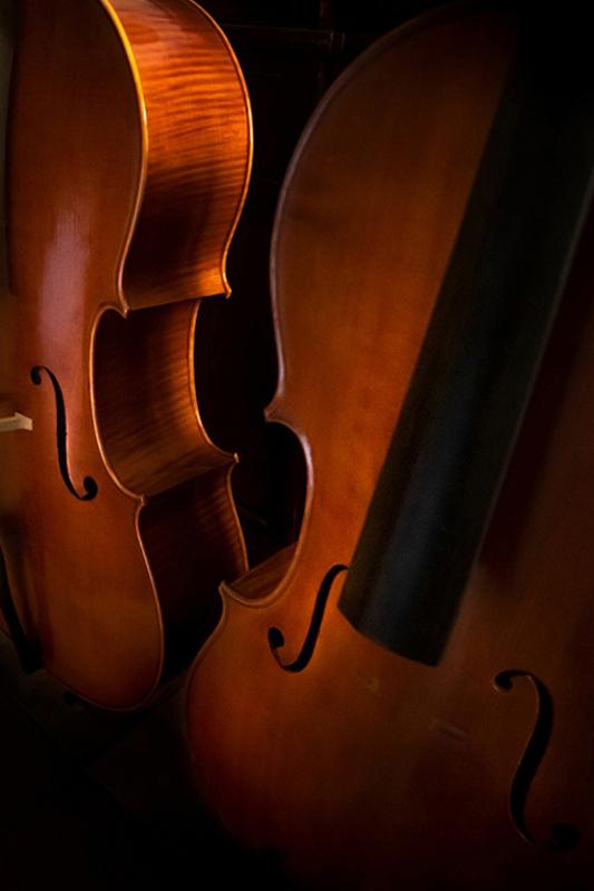 normal-Le-curve-dei-violoncelli-zzz