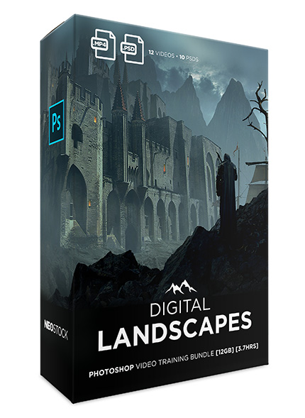 digital landscapes video training sales box master