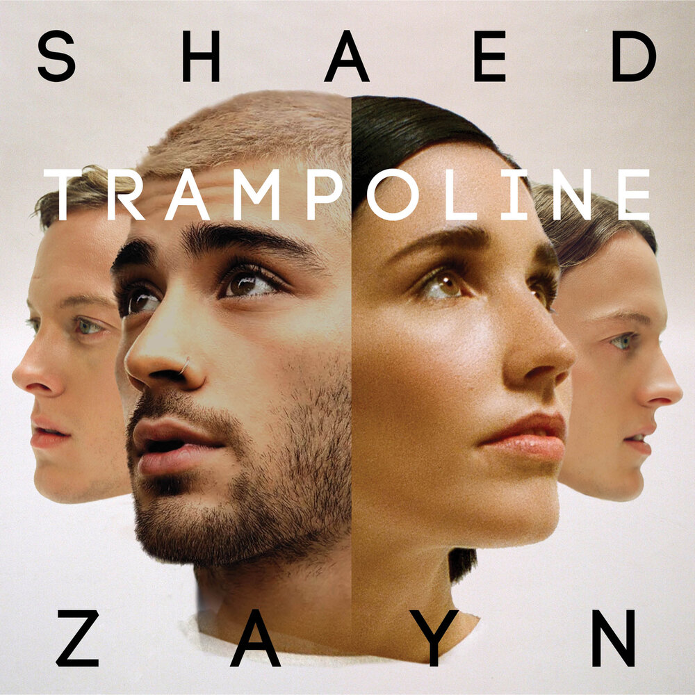 Shaed: Download Torrent Shaed, ZAYN