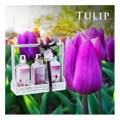 Bath Body and Spa Gift Sets in Relaxing Tulip Fragrance