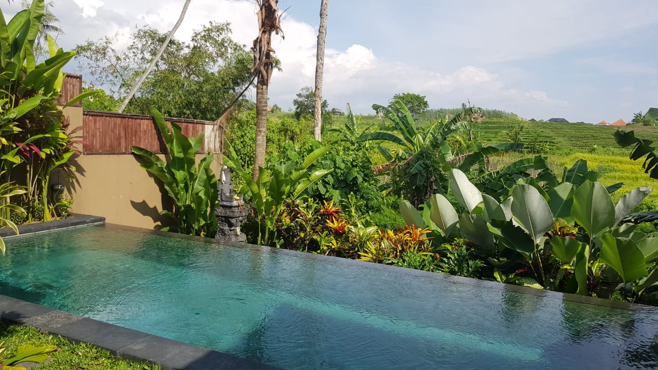 SALE OR RENT :  VILLA WITH NICE VIEW IN CANGGU - BALI