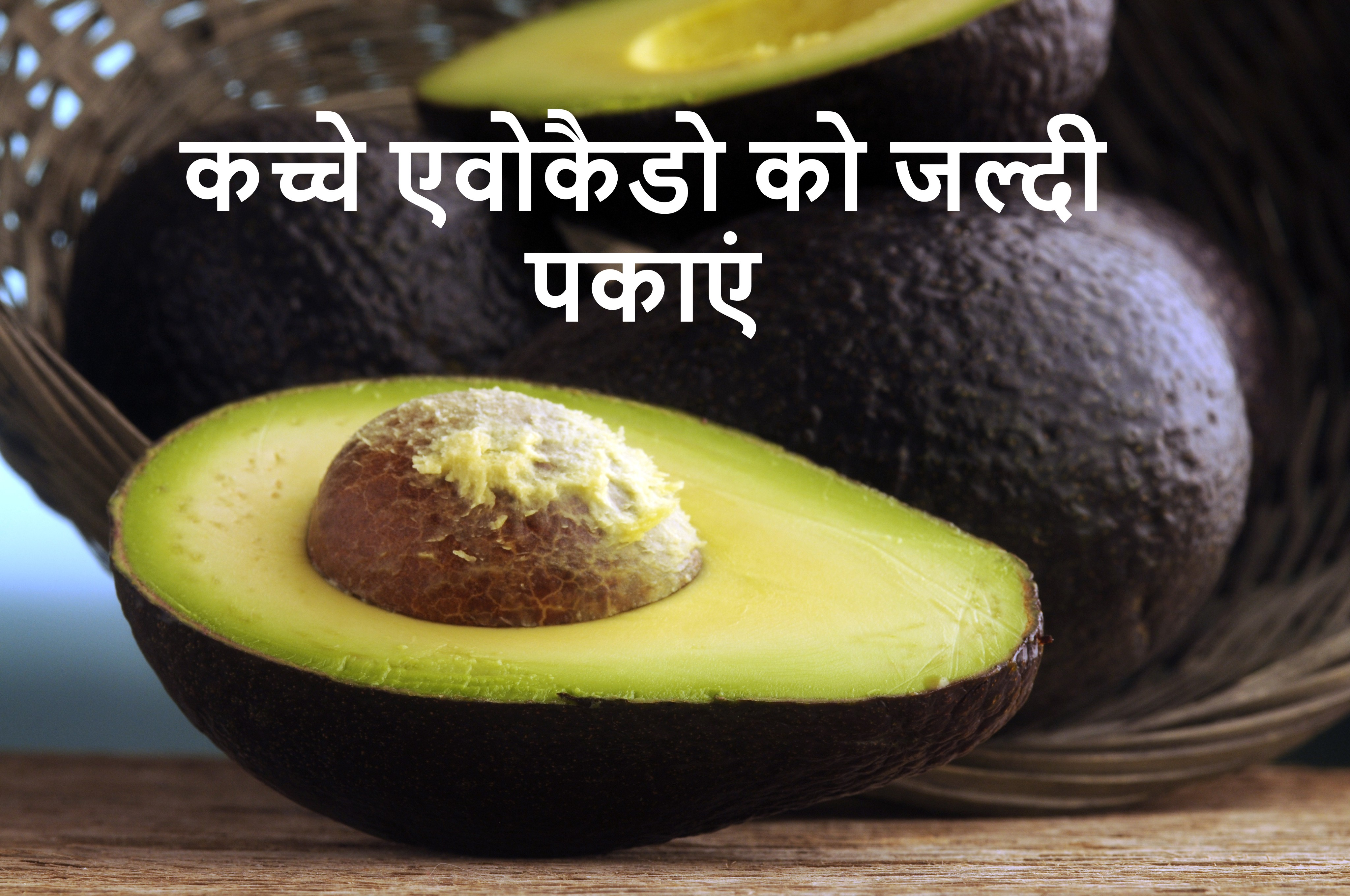 How to ripen avocados Fast