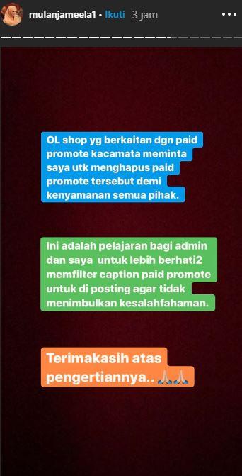 Instagram Story Mulan Jameela