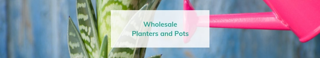 wholesale planters and pots