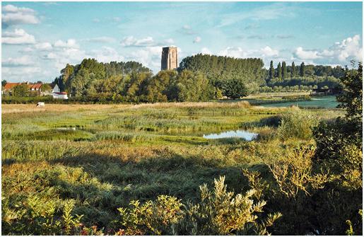 1280px-Natuurreservaat-Ter-Doest-met-Toren-Lissewege