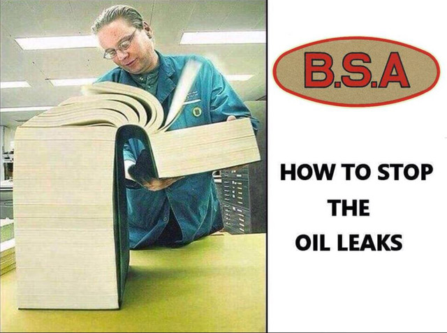 BSA-oil-leaks
