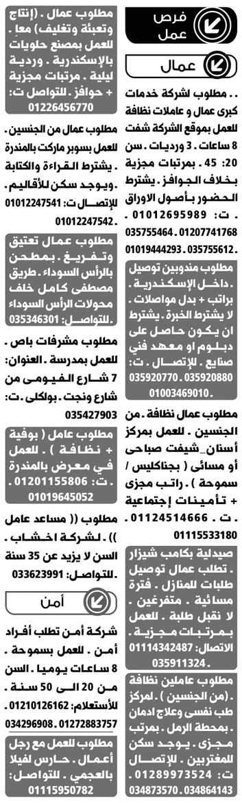 وظائف وسيط الأسكندرية