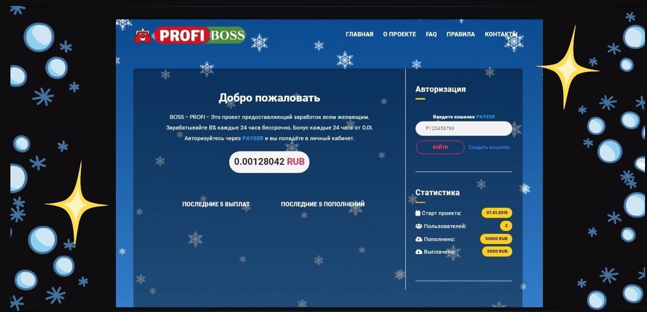 BOSS-PROFI