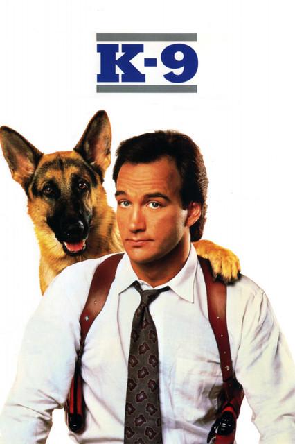 Смотреть К-9: Собачья работа / K-9 Онлайн бесплатно - Веселый полицейский-выдумщик Майкл Дули попал в беду: его пытается убить известный...