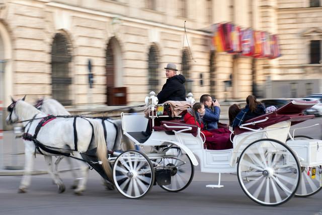 horse drawn carriage central park.jpg