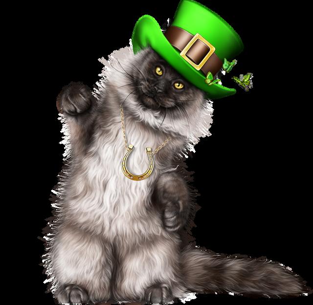 Leprechaun-Cat-With-Beer-05.png