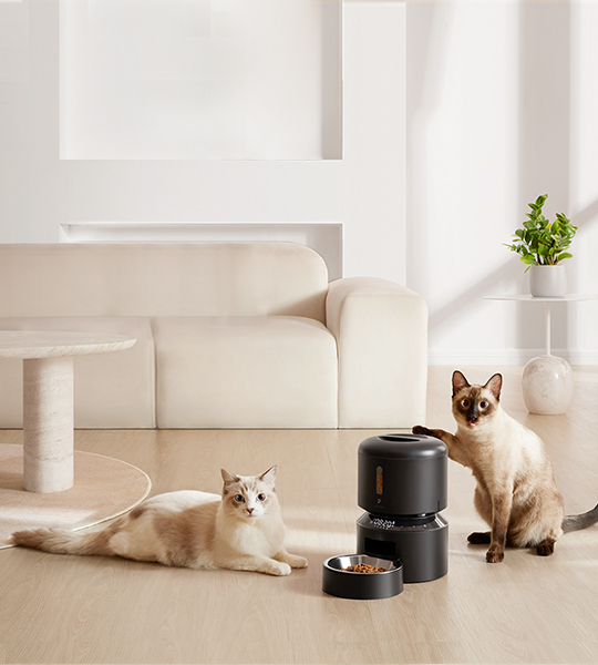The Benefits Of Automatic Pet Feeders