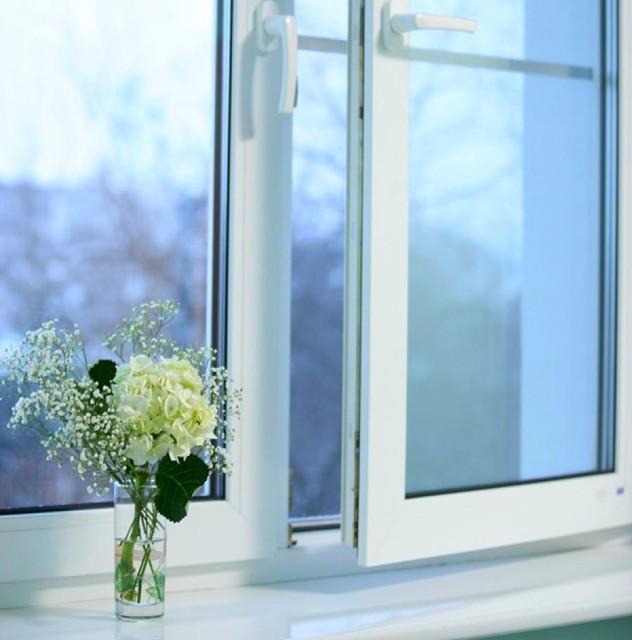 okno-dvystvorchatoe-plastikovoe