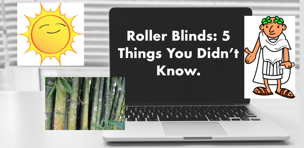 Roller Blinds: 5 Things You Didnt Know.