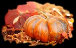 pretty-fall-pumpkin-calendaria