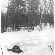 Dyatlov pass 1959 search 37