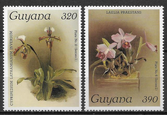 O Guyana 1696