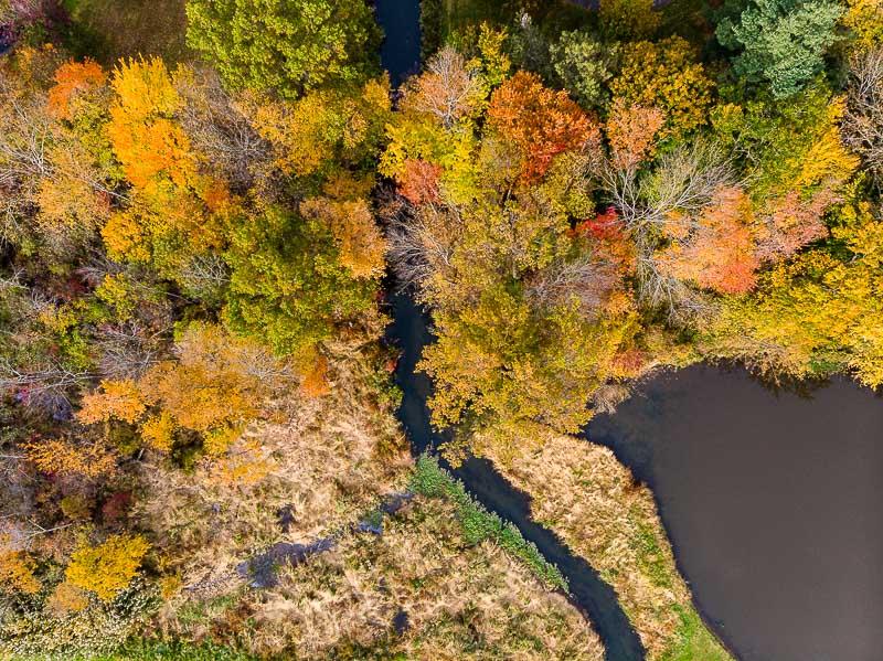 colonphoto-com-006-foliage-autumn-season-Verona-Park-in-New-Jersey-20191025-DJI-0757