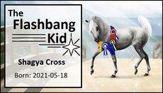 The_Flashbang_Kid.jpg
