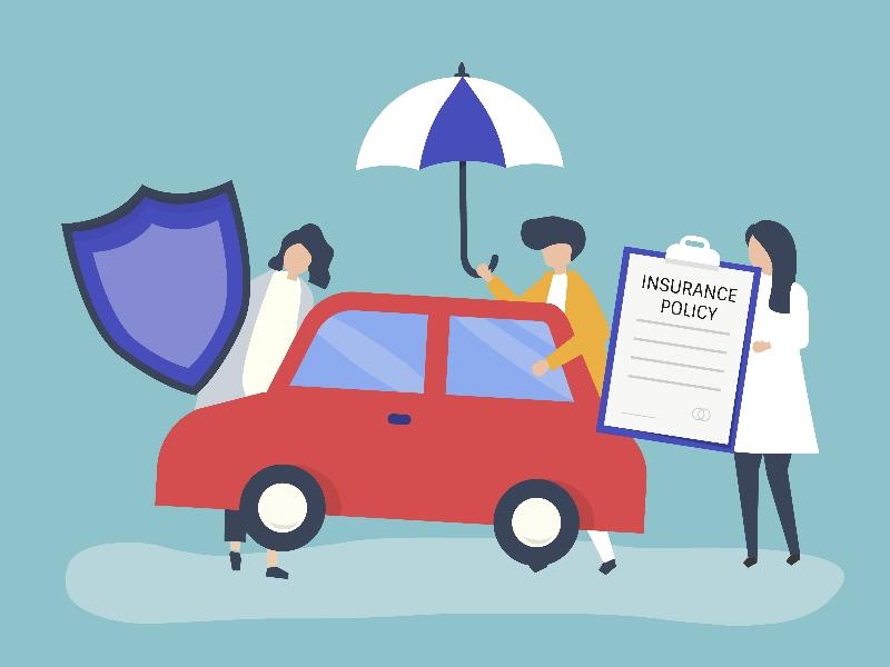 Auto Insurance Quotes Shua