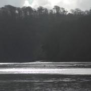06-mud-that-glistens