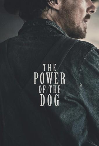Power-of-the-Dog-poster.jpg