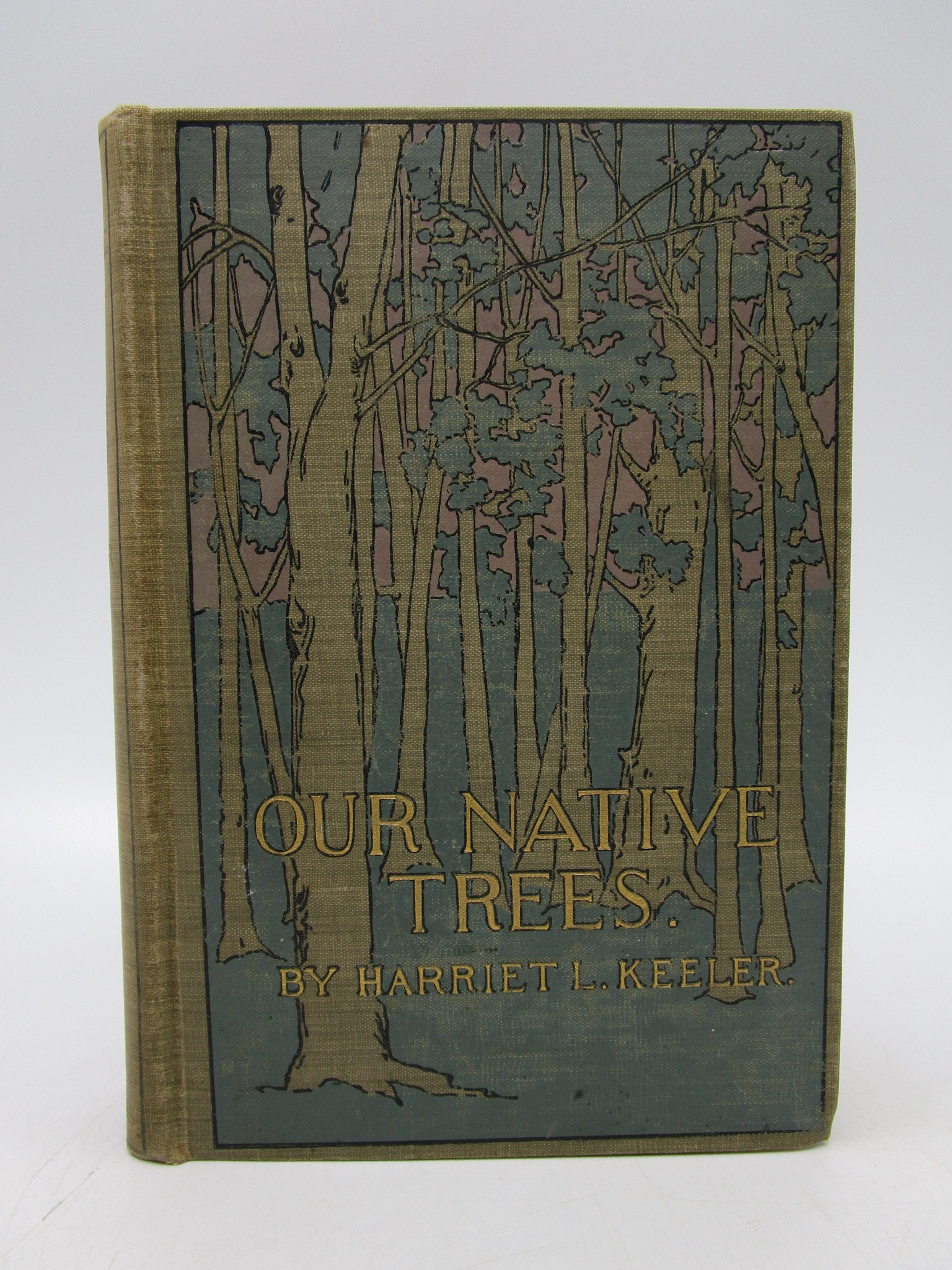 Image for Our Native Trees and How to Identify Them: A Popular Study of Their Habits and Their Peculiarities