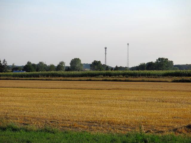 IMG-1069