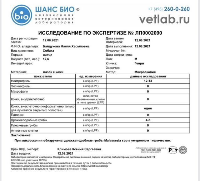 IMG-8806
