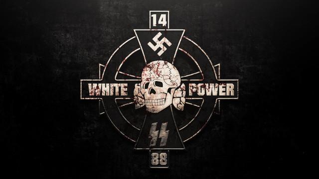 https://i.ibb.co/nmd80nj/White-Power-Wallpaper.jpg