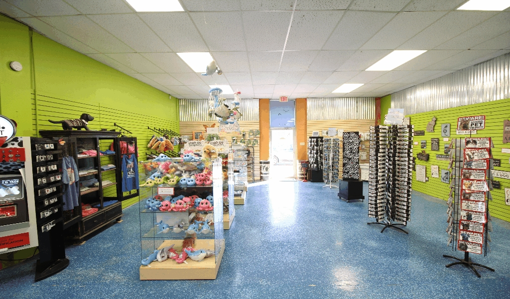 Pet Supplies Outlet