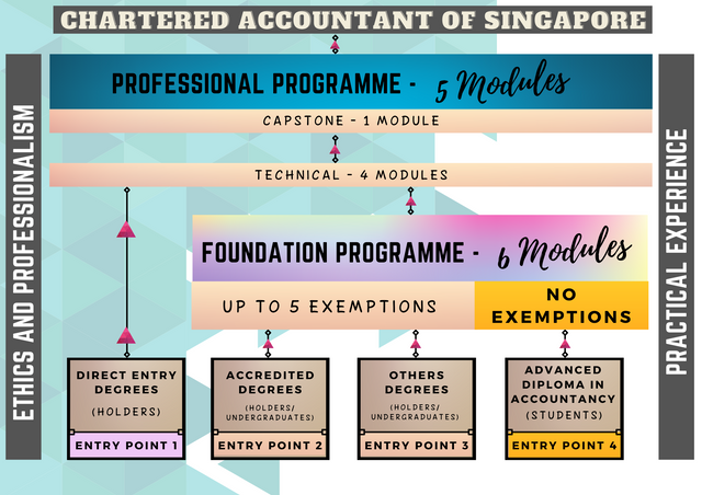 chartered-accountant-of-singapore