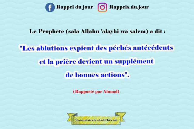 Hadith Les ablutions expient des péchés antécédents