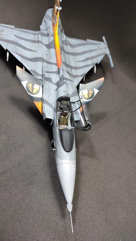 """MT: Jas-39C Gripen """"Wild Tiger"""" NTM 2017 Kitty Hawk 1/48 IMG-20200209-194810"""